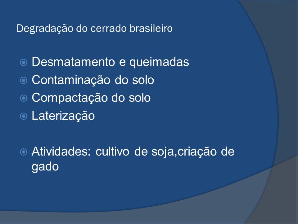 Degradação do cerrado brasileiro  Desmatamento e queimadas  Contaminação do solo  Compactação do solo  Laterização  Atividades: cultivo de soja,c