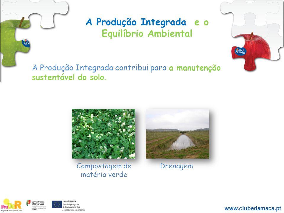 A Produção Integrada e o Equilíbrio Ambiental A Produção Integrada contribui para a manutenção sustentável do solo. Compostagem de matéria verde Drena