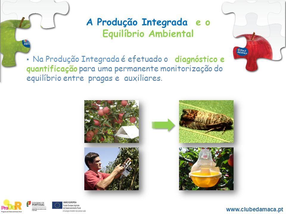 A Produção Integrada e o Equilíbrio Ambiental Na Produção Integrada é efetuado o diagnóstico e quantificação para uma permanente monitorização do equi