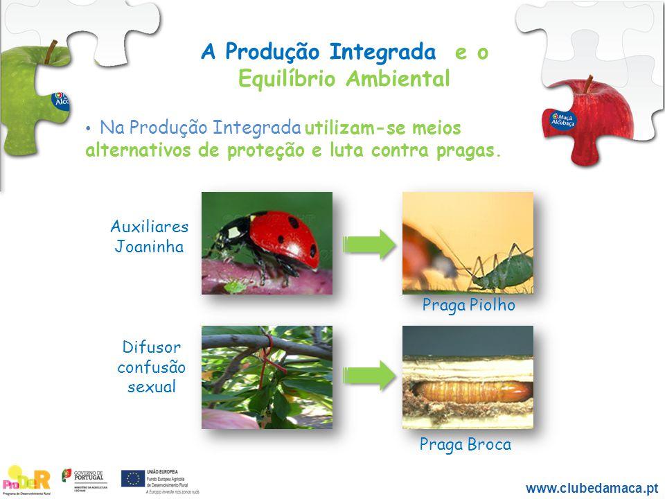 A Produção Integrada e o Equilíbrio Ambiental Na Produção Integrada utilizam-se meios alternativos de proteção e luta contra pragas. Auxiliares Joanin