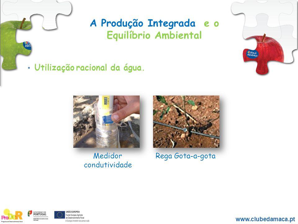 A Produção Integrada e o Equilíbrio Ambiental Utilização racional da água. Medidor condutividade Rega Gota-a-gota www.clubedamaca.pt