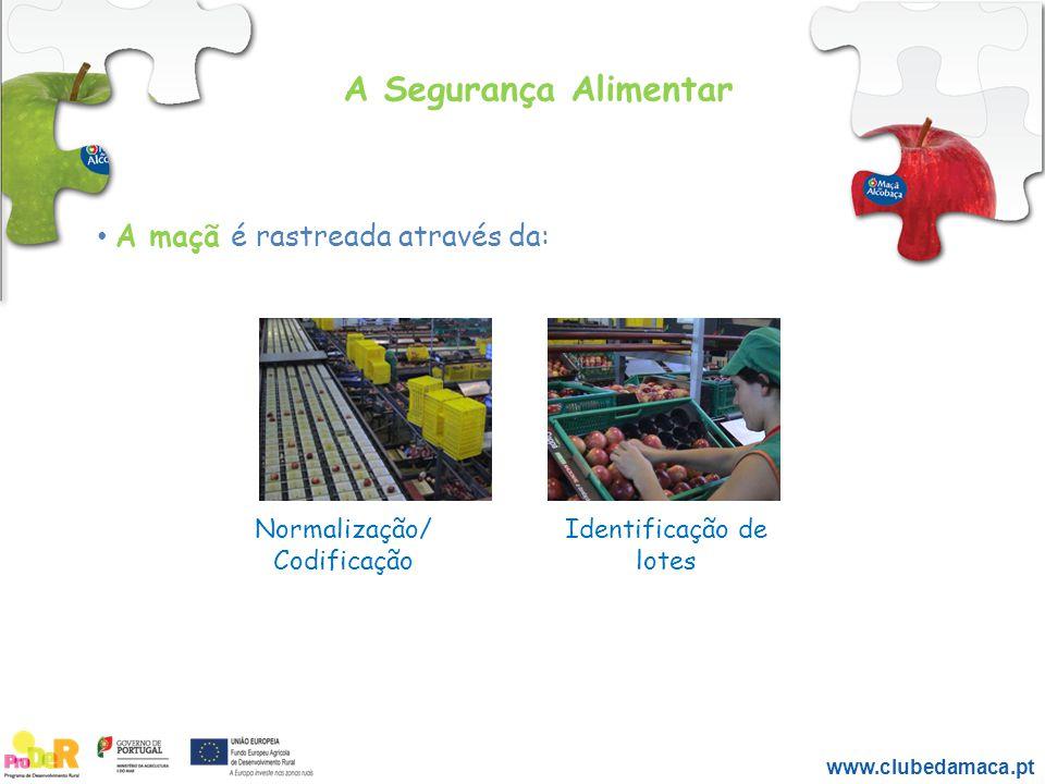 A maçã é rastreada através da: Normalização/ Codificação Identificação de lotes A Segurança Alimentar www.clubedamaca.pt