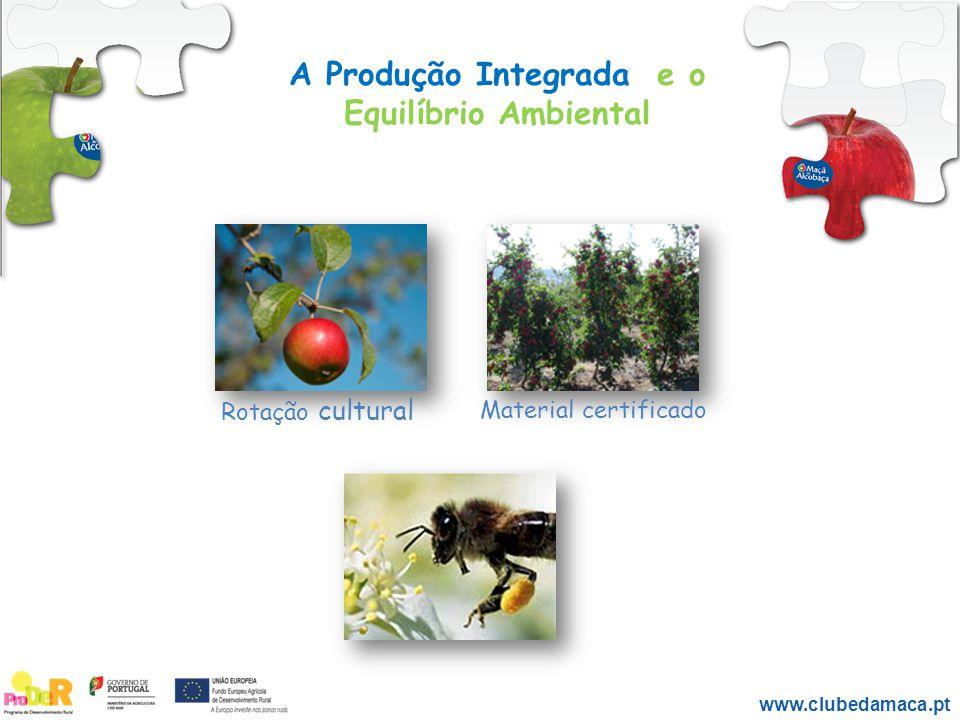 A Produção Integrada e o Equilíbrio Ambiental A Produção Integrada, também contribui para: A nutrição – desenvolvimento equilibrado das plantas e qualidade dos frutos.