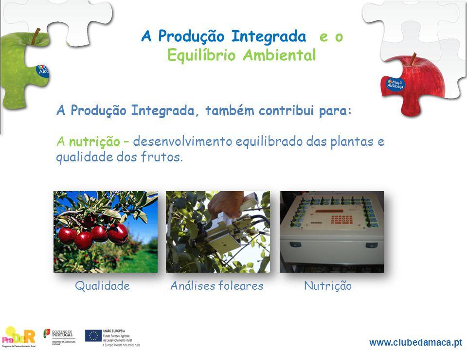 A Produção Integrada e o Equilíbrio Ambiental A Produção Integrada, também contribui para: A nutrição – desenvolvimento equilibrado das plantas e qual