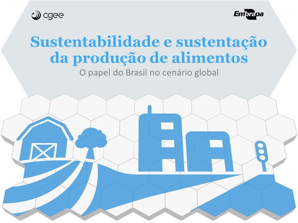 Sustentabilidade e sustentação da produção de alimentos O papel do Brasil no cenário global