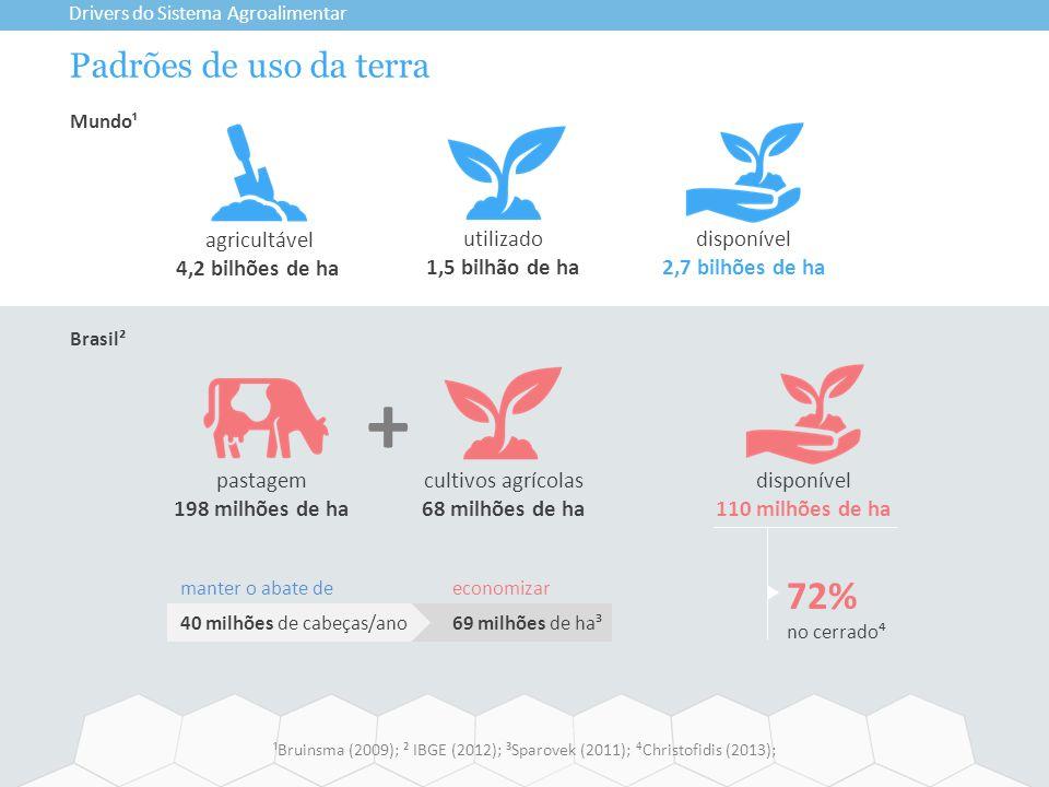 Padrões de uso da terra Drivers do Sistema Agroalimentar ¹Bruinsma (2009); ² IBGE (2012); ³Sparovek (2011); ⁴Christofidis (2013); manter o abate de 40