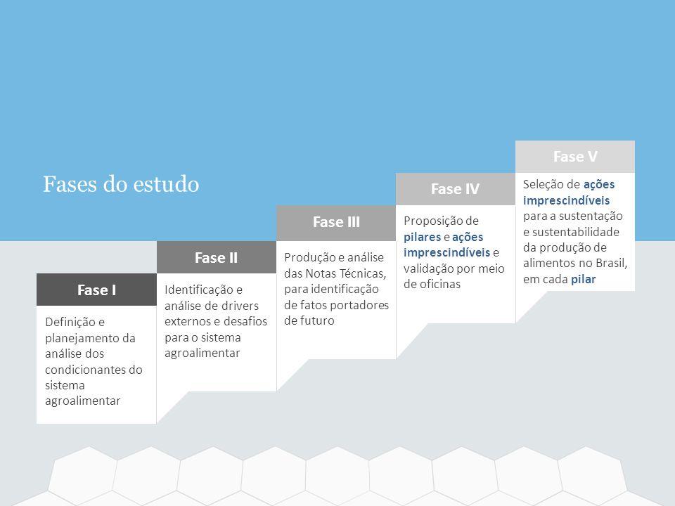 Fases do estudo Definição e planejamento da análise dos condicionantes do sistema agroalimentar Fase I Produção e análise das Notas Técnicas, para ide