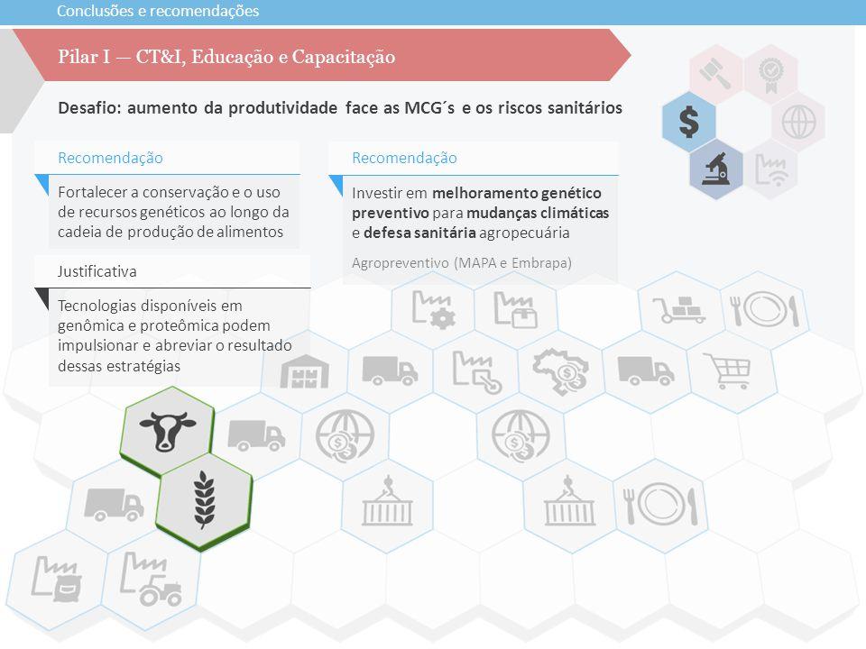 Conclusões e recomendações Desafio: aumento da produtividade face as MCG´s e os riscos sanitários Pilar I — CT&I, Educação e Capacitação Investir em m