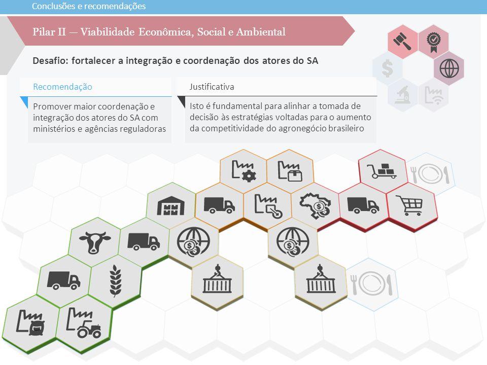 Conclusões e recomendações Desafio: fortalecer a integração e coordenação dos atores do SA Pilar II — Viabilidade Econômica, Social e Ambiental Promov