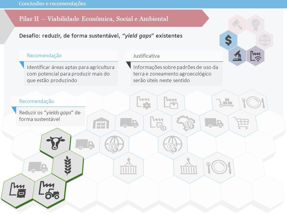 """Conclusões e recomendações Desafio: reduzir, de forma sustentável, """"yield gaps"""" existentes Pilar II — Viabilidade Econômica, Social e Ambiental Reduzi"""