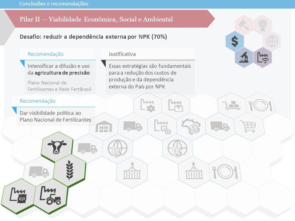 Conclusões e recomendações Desafio: reduzir a dependência externa por NPK (70%) Pilar II — Viabilidade Econômica, Social e Ambiental Intensificar a di