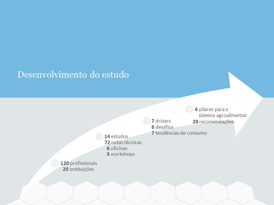 120 profissionais 20 instituições 14 estudos 72 notas técnicas 6 oficinas 3 workshops 7 drivers 6 desafios 7 tendências de consumo 6 pilares para o si