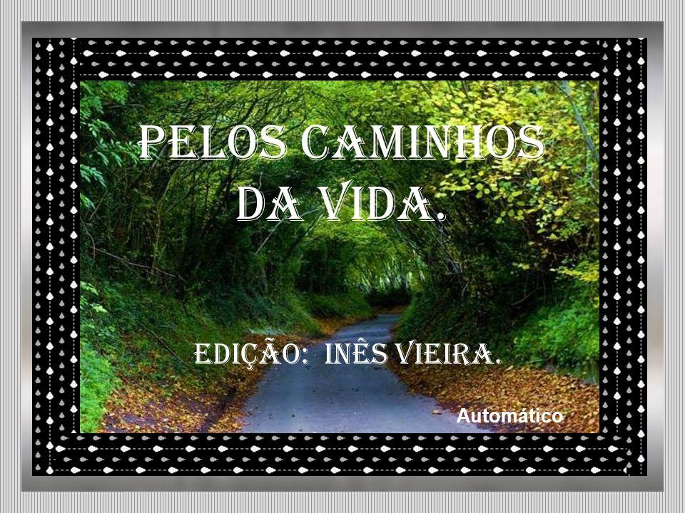 PELOS CAMINHOS DA VIDA. edição: Inês Vieira. Automático