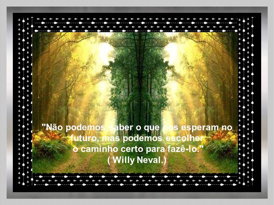 Não podemos saber o que nos esperam no futuro, mas podemos escolher o caminho certo para fazê-lo. ( Willy Neval.)