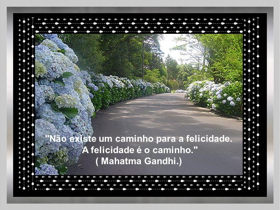Não existe um caminho para a felicidade. A felicidade é o caminho. ( Mahatma Gandhi.)