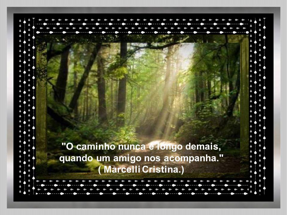 O caminho nunca é longo demais, quando um amigo nos acompanha. ( Marcelli Cristina.)