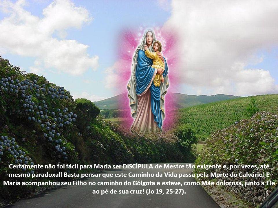 Maria foi DISCÍPULA no Caminho da VIDA, na intimidade da vida de família em Nazaré. Um dia, foram lhe contar que seu Filho não estava bem da cabeça (M
