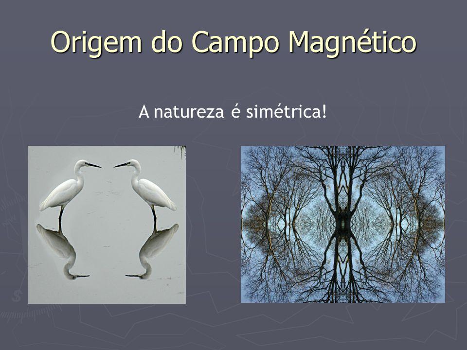 Origem do Campo Magnético A natureza é simétrica!