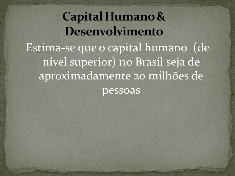 Estima-se que o capital humano (de nível superior) no Brasil seja de aproximadamente 20 milhões de pessoas