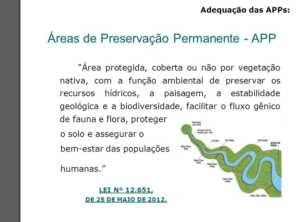 """Áreas de Preservação Permanente - APP """"Área protegida, coberta ou não por vegetação nativa, com a função ambiental de preservar os recursos hídricos,"""