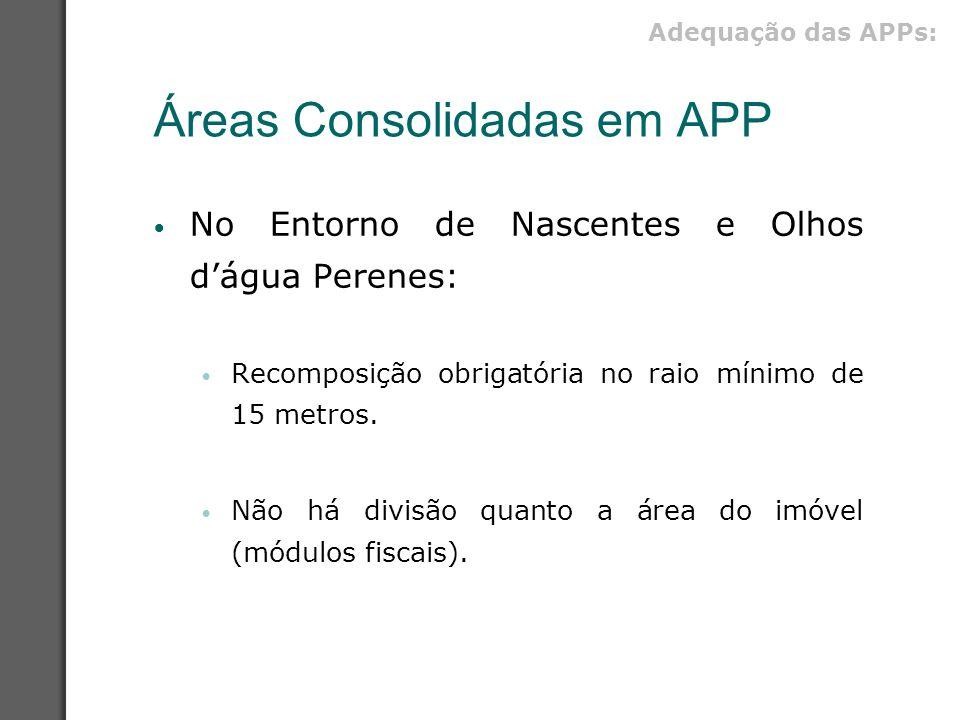 Áreas Consolidadas em APP No Entorno de Nascentes e Olhos d'água Perenes: Recomposição obrigatória no raio mínimo de 15 metros. Não há divisão quanto