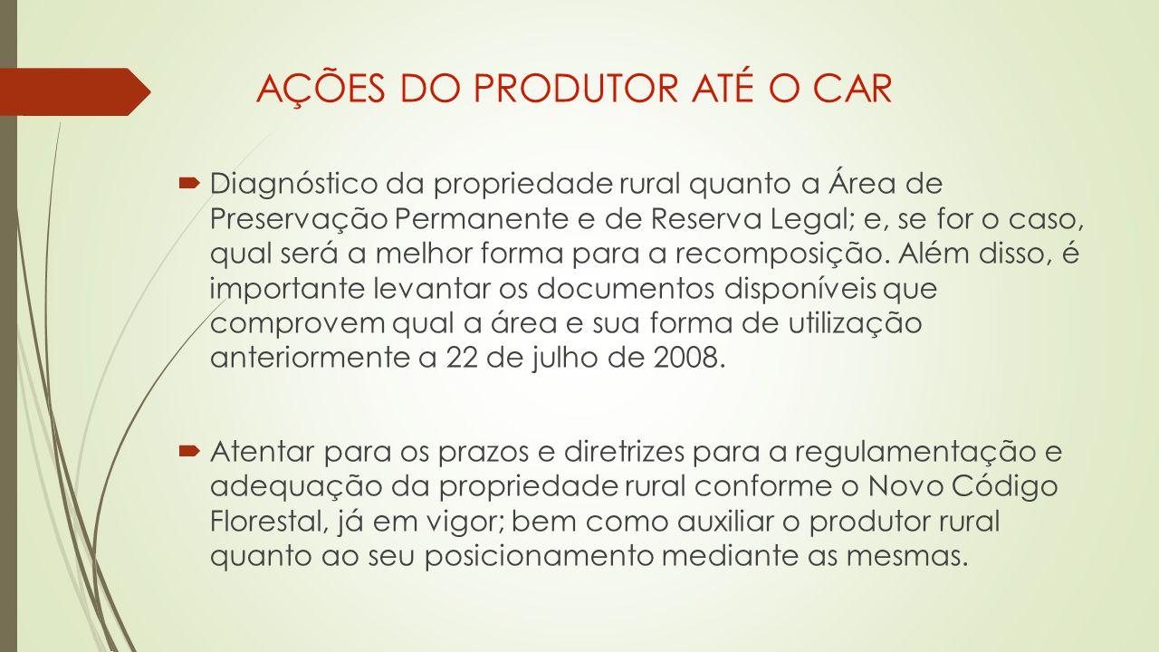 AÇÕES DO PRODUTOR ATÉ O CAR  Diagnóstico da propriedade rural quanto a Área de Preservação Permanente e de Reserva Legal; e, se for o caso, qual será a melhor forma para a recomposição.