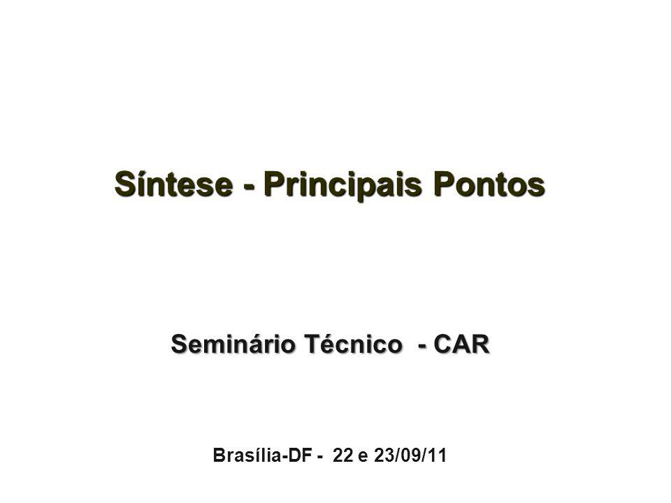 Síntese - Principais Pontos Seminário Técnico - CAR Brasília-DF - 22 e 23/09/11
