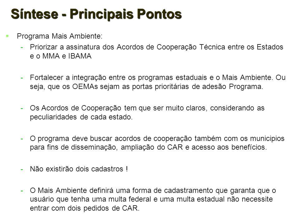 Síntese - Principais Pontos   Programa Mais Ambiente: - -Priorizar a assinatura dos Acordos de Cooperação Técnica entre os Estados e o MMA e IBAMA -