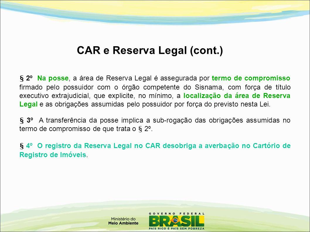 § 2º Na posse, a área de Reserva Legal é assegurada por termo de compromisso firmado pelo possuidor com o órgão competente do Sisnama, com força de tí