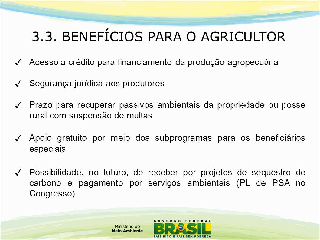 3.3. BENEFÍCIOS PARA O AGRICULTOR ✓ Acesso a crédito para financiamento da produção agropecuária ✓ Segurança jurídica aos produtores ✓ Prazo para recu