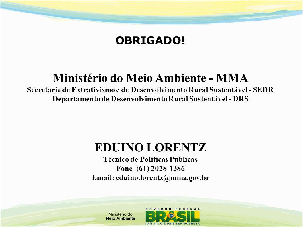 OBRIGADO! Ministério do Meio Ambiente - MMA Secretaria de Extrativismo e de Desenvolvimento Rural Sustentável - SEDR Departamento de Desenvolvimento R