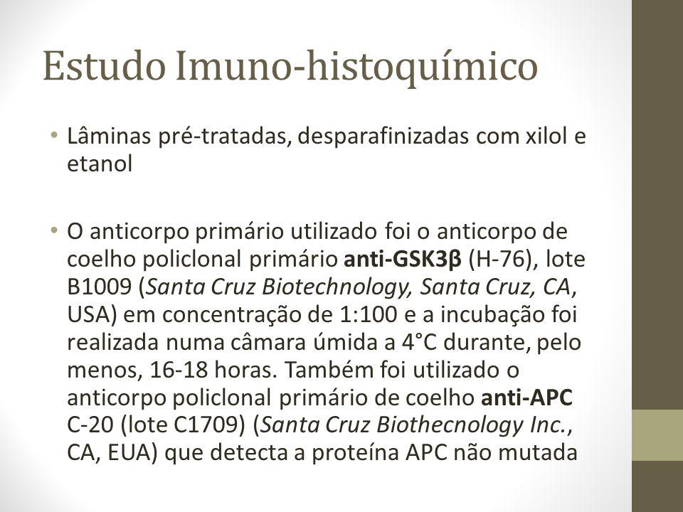 Estudo Imuno-histoquímico Lâminas pré-tratadas, desparafinizadas com xilol e etanol O anticorpo primário utilizado foi o anticorpo de coelho policlona