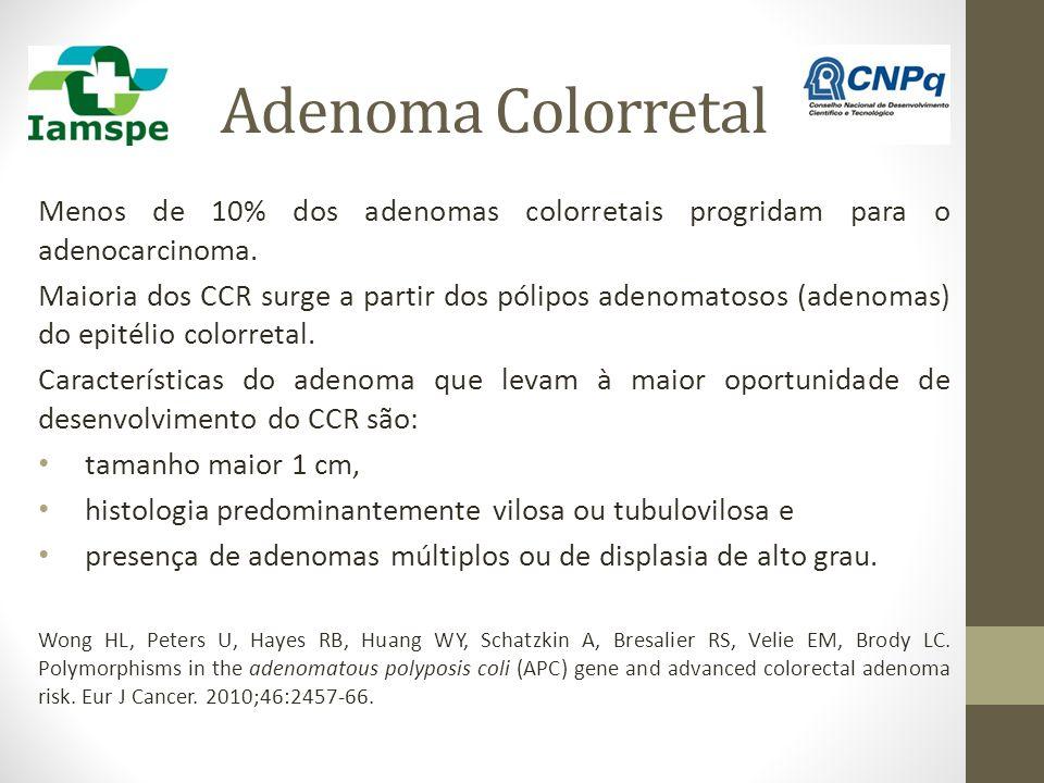 Adenoma Colorretal Menos de 10% dos adenomas colorretais progridam para o adenocarcinoma. Maioria dos CCR surge a partir dos pólipos adenomatosos (ade
