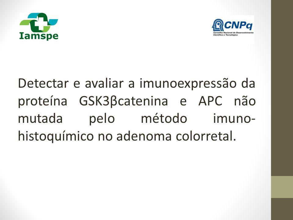 Detectar e avaliar a imunoexpressão da proteína GSK3βcatenina e APC não mutada pelo método imuno- histoquímico no adenoma colorretal.