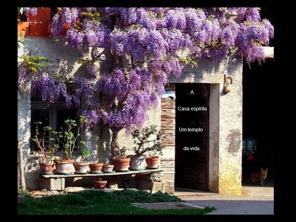 A Casa espírita Um templo da vida.