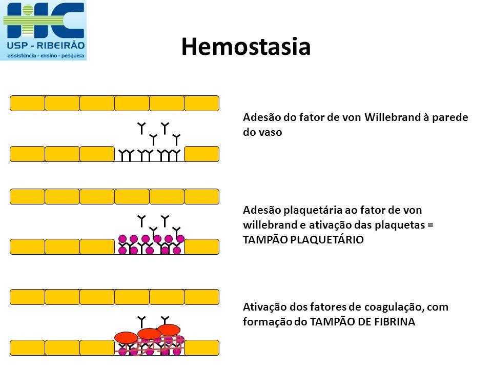 Hemostasia Adesão do fator de von Willebrand à parede do vaso Adesão plaquetária ao fator de von willebrand e ativação das plaquetas = TAMPÃO PLAQUETÁ