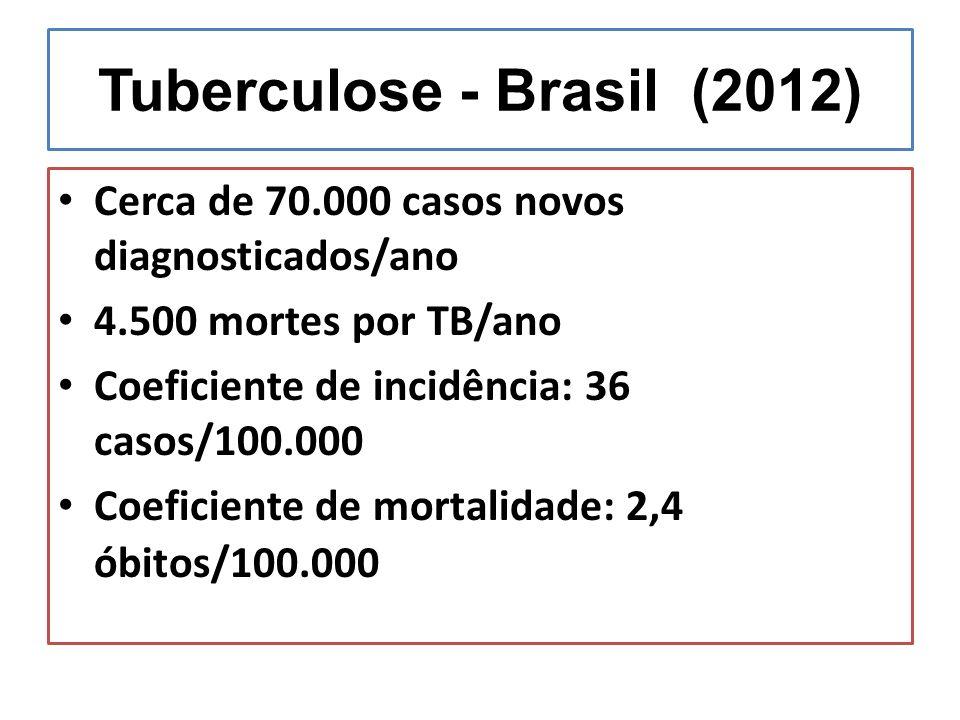 Tuberculose - Brasil (2012) Cerca de 70.000 casos novos diagnosticados/ano 4.500 mortes por TB/ano Coeficiente de incidência: 36 casos/100.000 Coefici