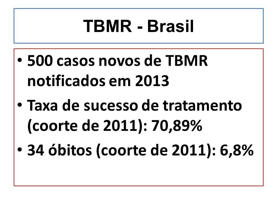TBMR - Brasil 500 casos novos de TBMR notificados em 2013 Taxa de sucesso de tratamento (coorte de 2011): 70,89% 34 óbitos (coorte de 2011): 6,8%