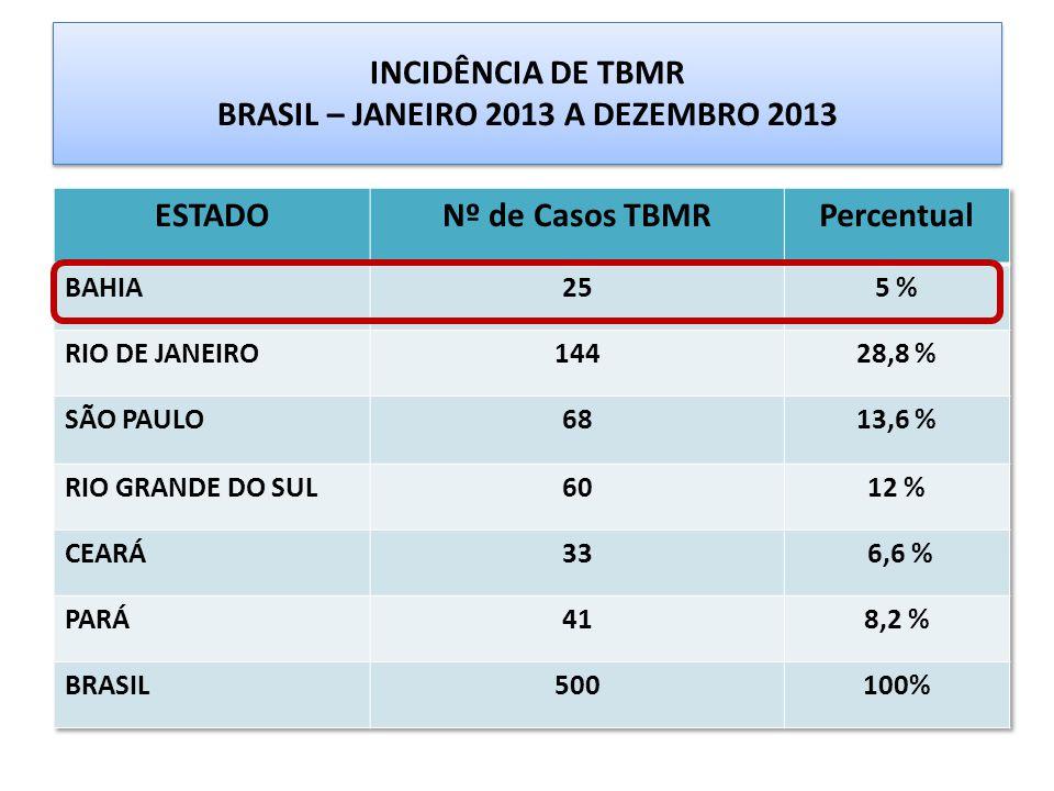 INCIDÊNCIA DE TBMR BRASIL – JANEIRO 2013 A DEZEMBRO 2013