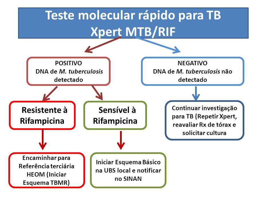 Teste molecular rápido para TB Xpert MTB/RIF POSITIVO DNA de M. tuberculosis detectado NEGATIVO DNA de M. tuberculosis não detectado RResistente à Rif