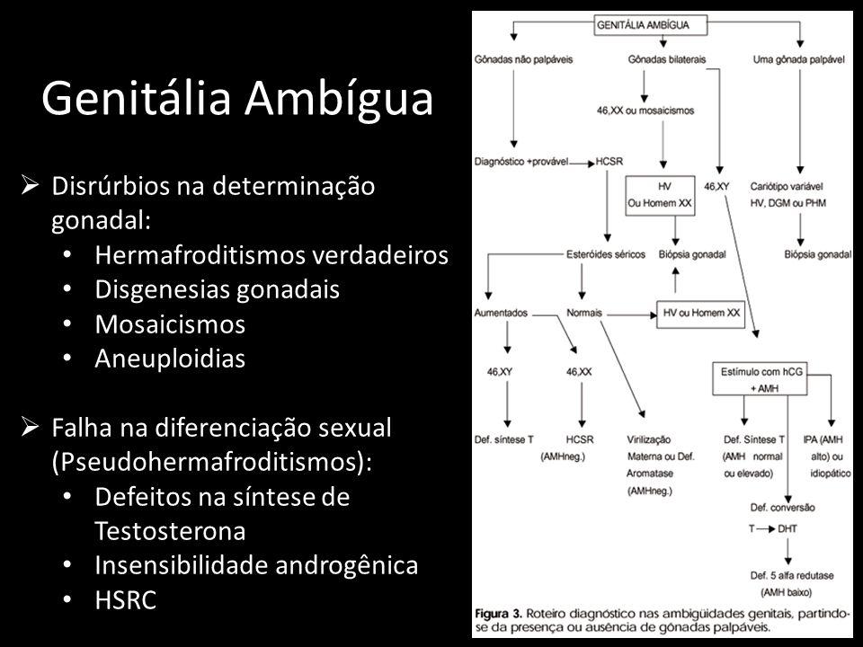 Genitália Ambígua  Disrúrbios na determinação gonadal: Hermafroditismos verdadeiros Disgenesias gonadais Mosaicismos Aneuploidias  Falha na diferenc
