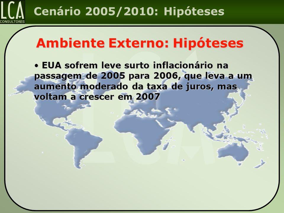 CONSULTORES Cenário 2005/2010: Hipóteses Ambiente Externo: Hipóteses EUA sofrem leve surto inflacionário na passagem de 2005 para 2006, que leva a um