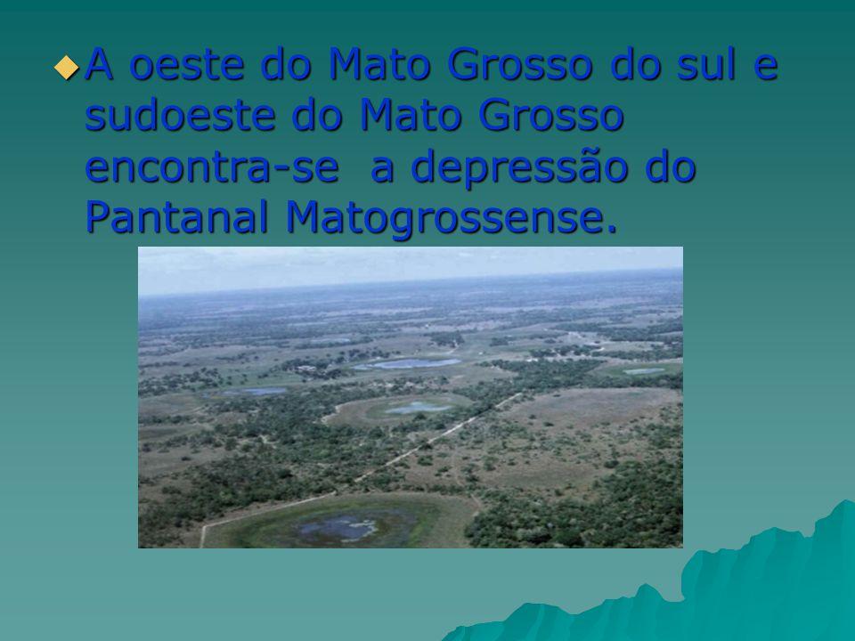 URBANIZAÇÃO A região vive intenso processo de urbanização.