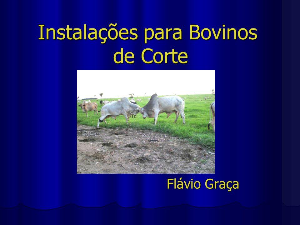 Instalações para Bovinos de Corte Flávio Graça
