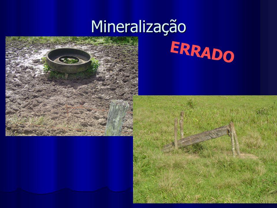 Mineralização ERRADO