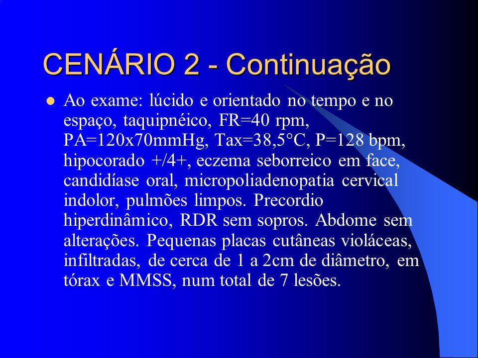 Ao exame: lúcido e orientado no tempo e no espaço, taquipnéico, FR=40 rpm, PA=120x70mmHg, Tax=38,5°C, P=128 bpm, hipocorado +/4+, eczema seborreico em