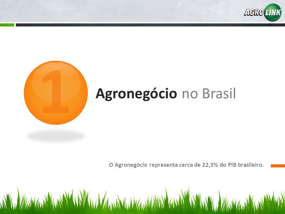 Agronegócio no Brasil O Agronegócio representa cerca de 22,3% do PIB brasileiro. 1