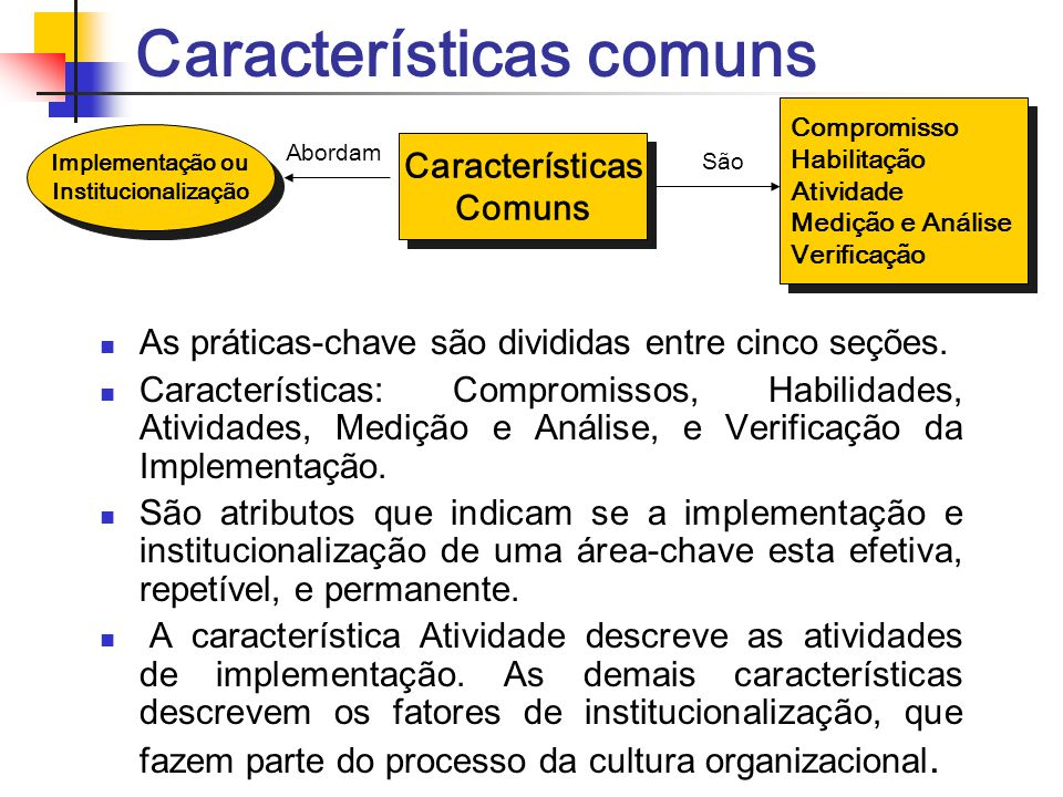 Características comuns As práticas-chave são divididas entre cinco seções. Características: Compromissos, Habilidades, Atividades, Medição e Análise,