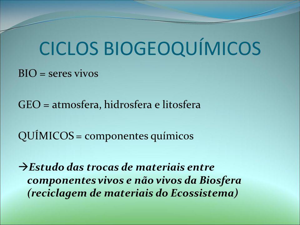 NODULOS NAS RAIZES (RADICICOLAS) – recebem proteçao e alimento e fornecem um suprimento de nitrogênio aproveitavel (NH3)