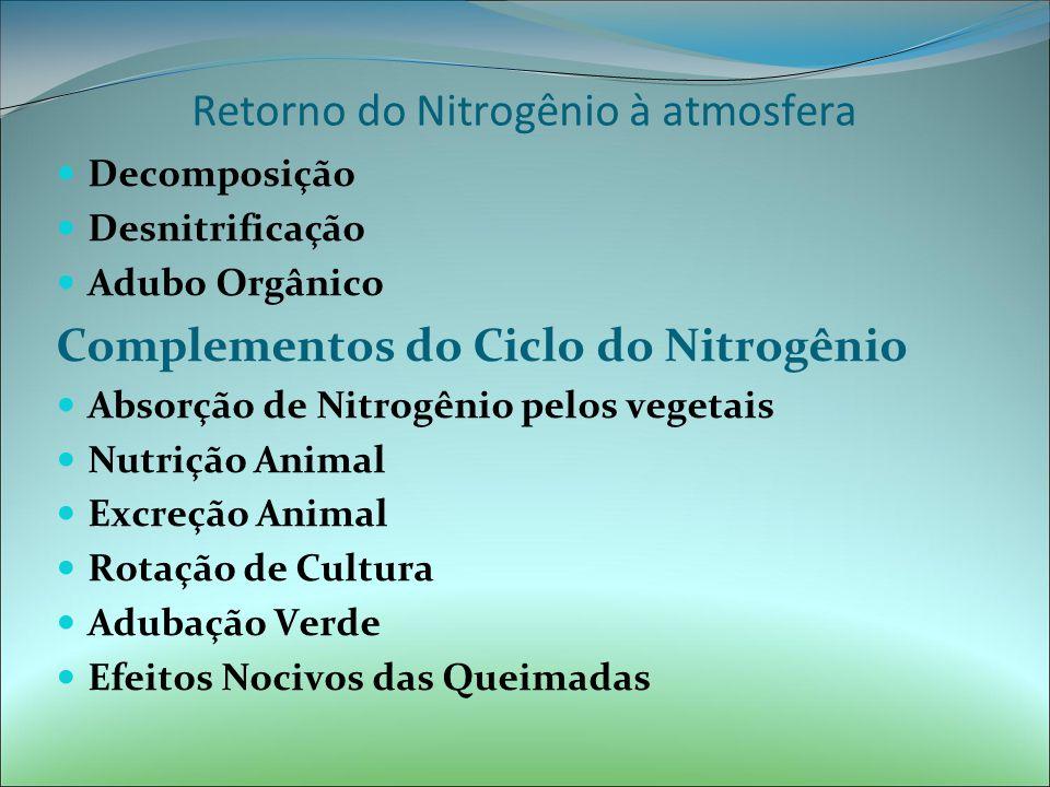 Retorno do Nitrogênio à atmosfera Decomposição Desnitrificação Adubo Orgânico Complementos do Ciclo do Nitrogênio Absorção de Nitrogênio pelos vegetais Nutrição Animal Excreção Animal Rotação de Cultura Adubação Verde Efeitos Nocivos das Queimadas